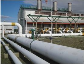 Transportadora de Gas del Sur (TGS)